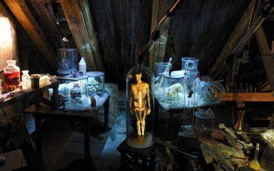 Alchemy Museum: Speculum Alchemiae