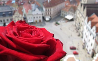 Celebrate Valentine Day in Prague