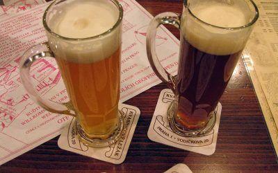 Beer Tasting and Beer Gardens