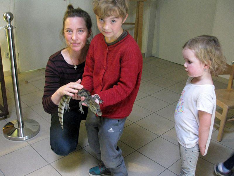 Crocodile Zoo: Cuddle a Baby Alligator